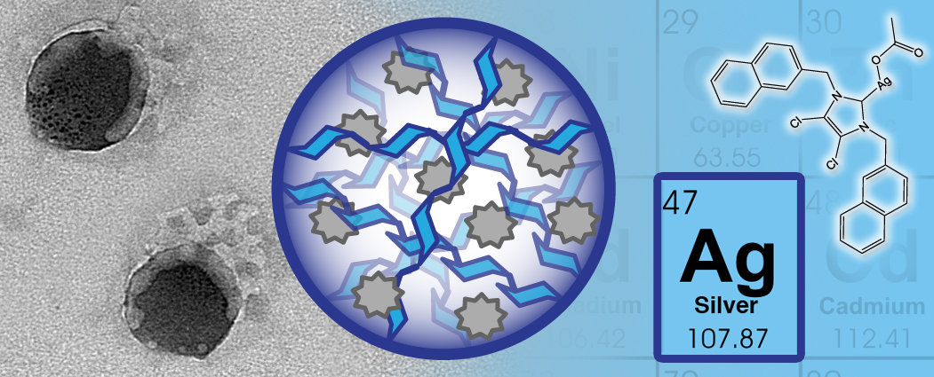 Silver Antimicrobials in Nanoparticles Delivery