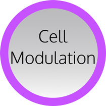 Ring Cell Modulation