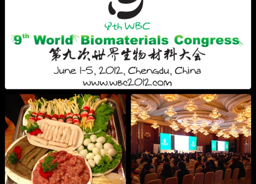 Chengdu 9th World Biomaterial Congress 2012