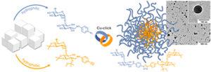 Biomacromolecules Dextran Micelles Nanoparticle Breitenbach Schmid Wich