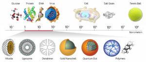 nanometer scale comparison nanoparticle size comparison nanotechnology chart ruler