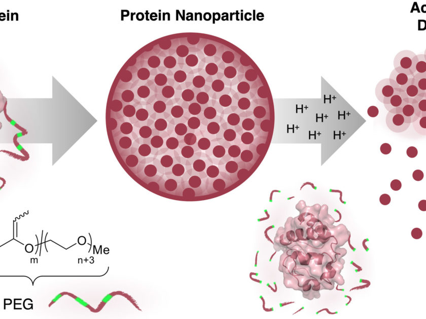 New paper in Polymer Chemistry: Congratulations Elena and Johannes!