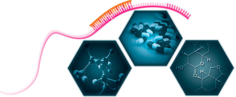 "miRNA nanotherapeutics: Potential and challenges in respiratory disorders"" M. Mehta, D.K. Chellappan, P. R. Wich, N. G. Hansbro, P. M. Hansbro, K. P. Dua Future Med. Chem., 2020"
